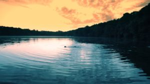 summer-lake
